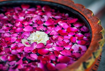 Rosenblüten in einem indischen Tongefäß